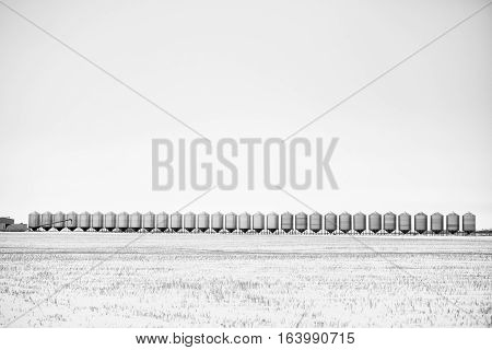 Long row of steel grain storage bins beside an agricultural field in black and white winter landscape