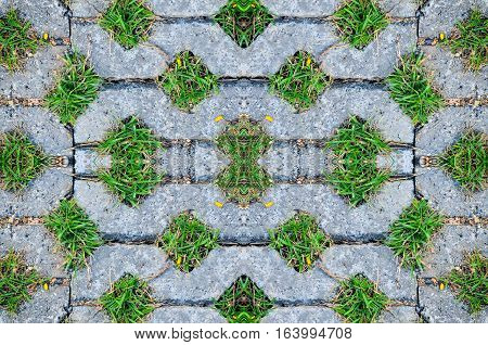 top view green field background in texture concrete