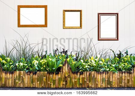 Bamboo Fence With Ornamental Plants