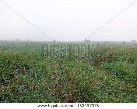 Countryside landscape in the early foggy morning