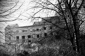 The old dilapidated brewery. Unmaintained building in an overgrown park. poster