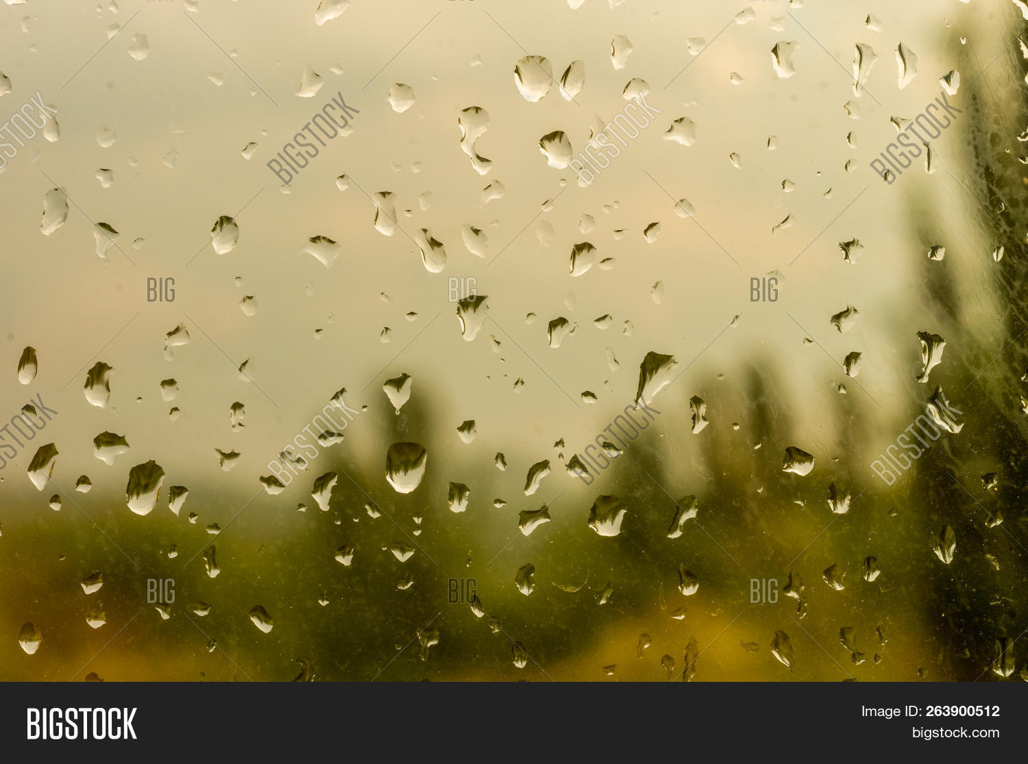 Raindrops On Window Image & Photo (Free Trial) | Bigstock