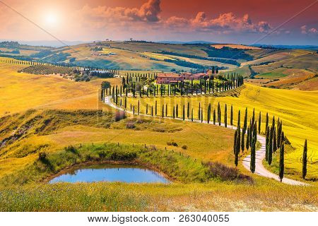 Amazing Colorful Sunset In Tuscany. Picturesque Agrotourism And Typical Curved Road With Cypress, Cr