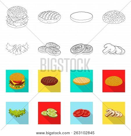 Isolated Object Of Burger And Sandwich Sign. Collection Of Burger And Slice Stock Vector Illustratio
