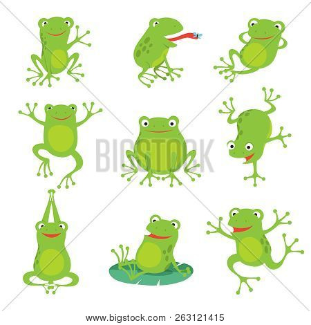 Cute Cartoon Frogs. Green Croaking Toad On Lotus Leaves In Pond. Vector Animal Characters Set Of Amp