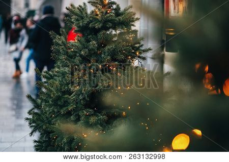 Stylish Garland Lights On Christmas Trees Fir Branches With Christmas Decorations  In European City