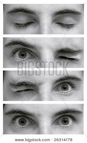 Detail der Augen