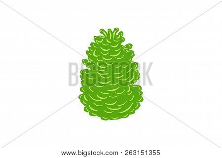 Green Cypress Logo Designs Inspiration Isolated On White Background