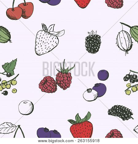 Berries Seamless Pattern. Vintage Hand Drawn Berries Sketches. Cherry, Strawberry, Gooseberry, Curra