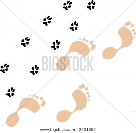 Footprints And Pawprints.Eps