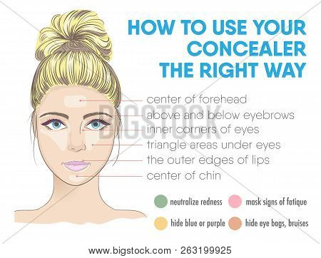 How To Use Your Concealer The Right Way Infographic. Vector Illustration With Makeup And Beauty Tips