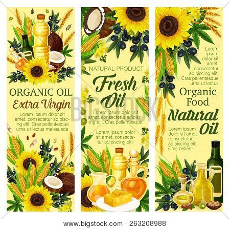Cooking Oils And Organic Food. Vector Extra Virgin Olive, Sunflower Seed Or Coconut And Flax Or Corn