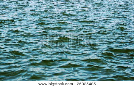 An expanse of choppy water.