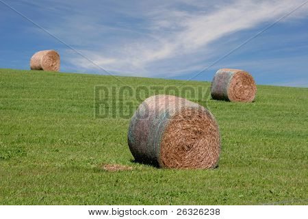 Hay bales on a hill under the summer sky.