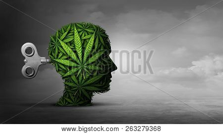 Cannabis And Mental Function With The Use Of Marijuana As A Psychiatric Or Psychiatry Concept Of The