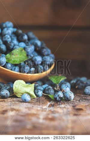 Autumn Harvest Blue Sloe Berries On A Wooden Table Background. Copy Space. Dark Rustic Style. Natura