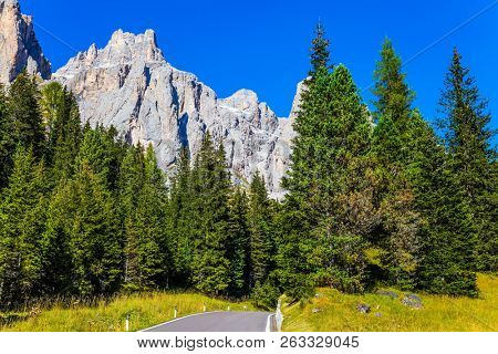 The road passes in the forests at the foot of dolomite rocks. Dolomite Alps. The beautiful sunny day. The concept of active and automobile tourism