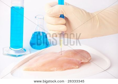 Researcher injecting GMO chicken meat. Genetically modified organism or GEO here transgenic plant is an plant whose genetic material has been altered using genetic engineering techniques poster