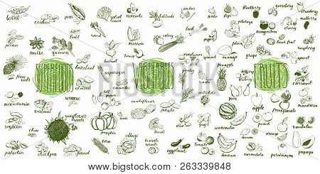 Fruits, Vegetables And Superfoods Collection. Hand Drawn Set Of Healthy And Organic Food. Multiset O