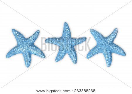 Three Blue Starfish On White Background Isolated