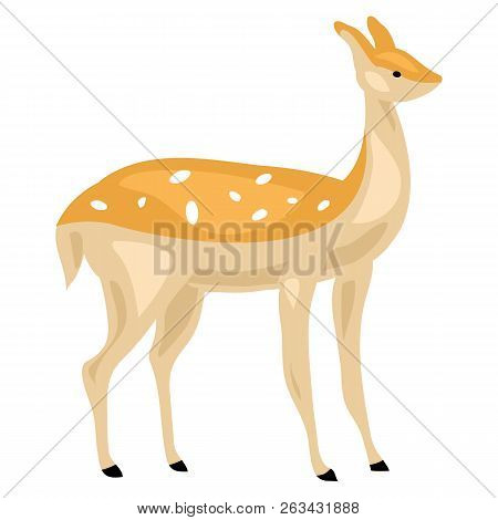 Female Deer Icon. Cartoon Of Female Deer Vector Icon For Web Design Isolated On White Background