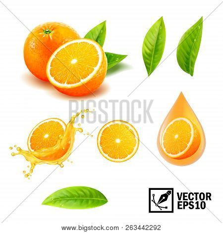 3d Realistic Vector Set Of Elements ( Whole Orange, Sliced Orange, Splash Orange Juice, Drop Orange