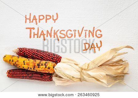 Happy Thanksgiving Day greeting card - handwriting on art canvas with decorative corn