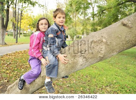kids hanging from the branch of a tree