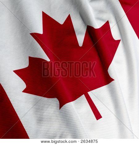 Canadian Flag Closeup