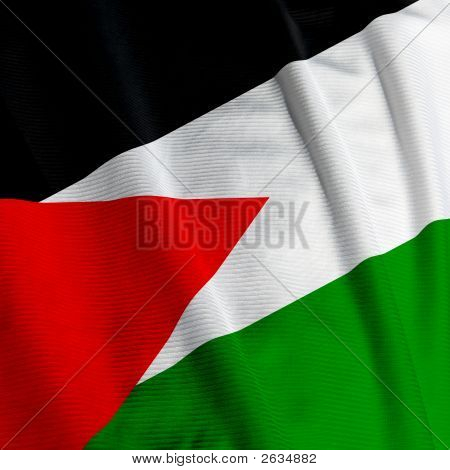 Palestinean Flag Closeup