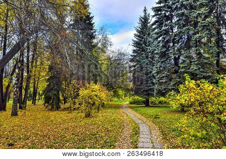 Walkway In Autumn City Park With Multi-colored Foliage Of Coniferous And Deciduous Trees And Bushes.