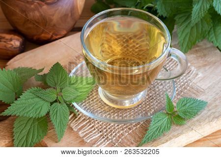 A Cup Of Herbal Tea With Fresh Stinging Nettles