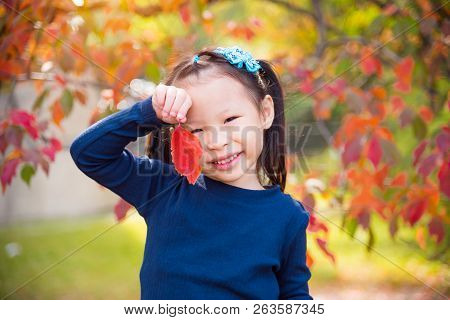 Little Asian Girl Holding Red Color Leaf And Smile In Autumn Park