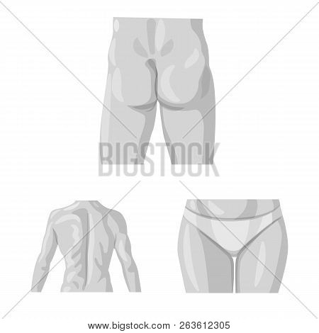 Vector Design Of Human And Part Sign. Set Of Human And Woman Vector Icon For Stock.