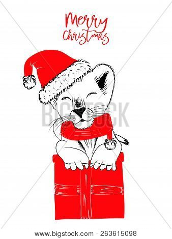 Hand Drawn Vector Illustration With A Cute Baby Lion Celebrating Merry Christmas - Isolated On White