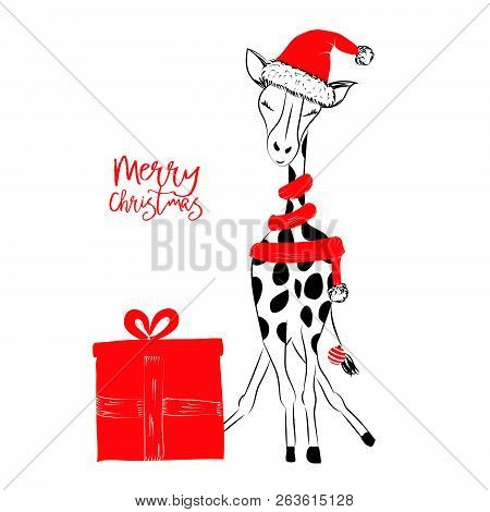 Hand Drawn Monochrome Vector Illustration With A Cute Giraffe Celebrating A Merry Christmas - Isolat