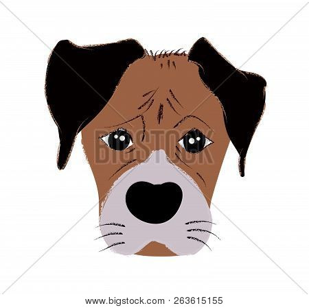 Boxer Dog Cute Head And Expression Face - Vector Hand Drawn Illustration Isolated On White Backgroun