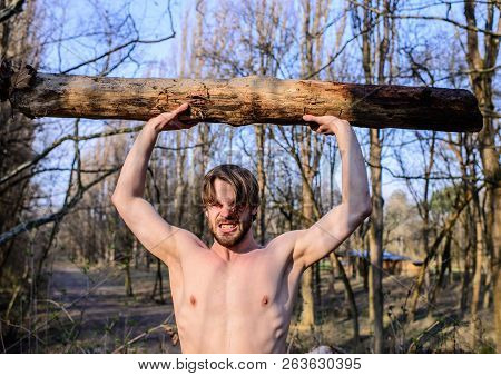Man Beaded Brutal Sexy Lumberjack Carry Big Heavy Log. Man Brutal Strong Attractive Guy Collecting W