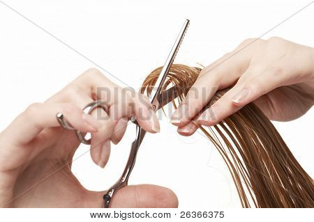 hair stylist cutting wet hair with professional scissors, beauty salon