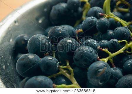 Fresh Grapes Food Closeup. Healthy Food. Vegetarian Food. Nutritious Food. Plate Of Black Grapes. Fo