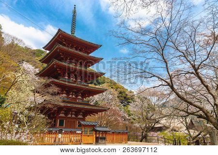 The Hasedera wooden pagoda at spring in Kansai province, Japan