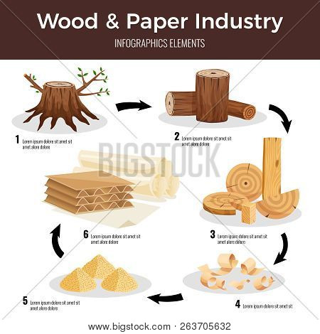 Wood Paper Manufacturing Flat Infographic Schema From Cut Logs Lumber Chips Pulp Converted To Paperb