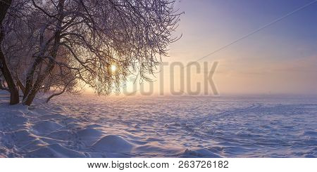 Winter Landscape In The Evening At Sunset. Snow, Frost In January. Winter Nature Background. Trees I