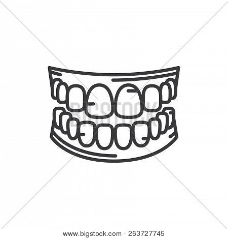 Human Teeth Vector Icon On White Background. Human Teeth Icon In Modern Design Style. Human Teeth Ve