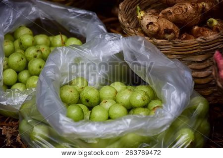 Makhampom, Indian Gooseberry, Phyllanthus Emblica Green Fruits.