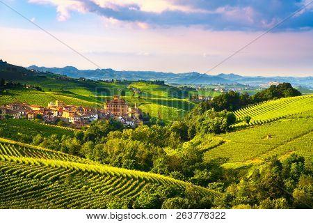 Langhe Vineyards Panorama, Barolo Village, Unesco Site, Piedmont, Northern Italy Europe.
