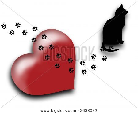 The Cat Walks All Over My Heart
