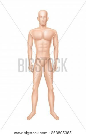 Vector 3d Realistic Male Mannequin, Full Body Of Man. Human Figure For Training, Athlete Equipment I
