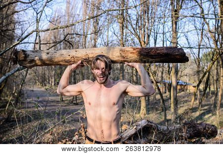 Man Brutal Strong Attractive Guy Collecting Wood In Forest. Explore Woods. Man Beaded Brutal Sexy Lu