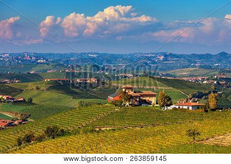 Rural house on the hill among autumnal vineyards in Piedmont, Northern Italy.